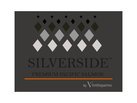 Silver Side - WDesign - Diseño Web Puerto Montt