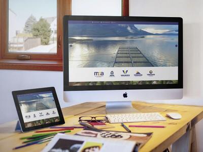 Walbusch - Diseño Web Puerto Montt